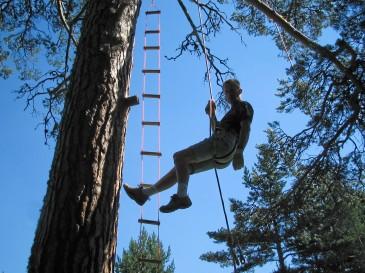 """activitesmontagne66 """"grimpe d'arbres"""" """"escalade d'arbres"""" acrocime"""